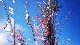 Shangri-La: Mountain worship festival marked in Niru village