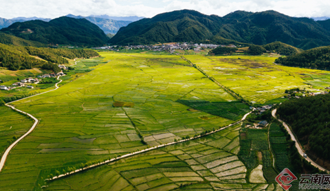 In pics: Pastoral crop fields in Pantiange, Weixi County