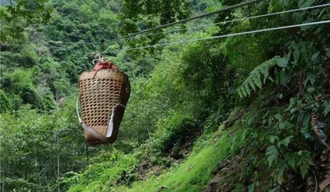New ziplines built up in Nujiang village for planting tsao-ko